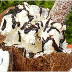 COCONUT ICE CREAM – ΠΑΓΩΤΟ SURVIVOR!!!